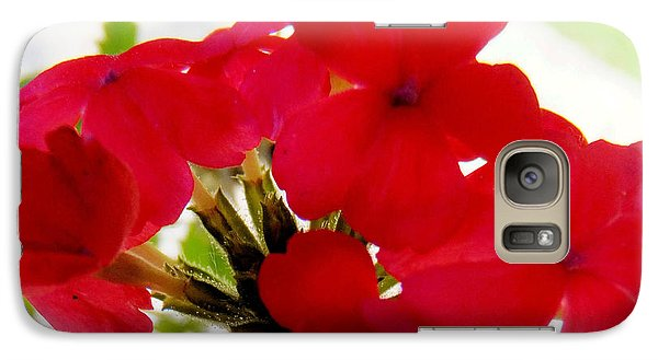 Galaxy Case featuring the photograph Red In The Garden by Carolyn Repka