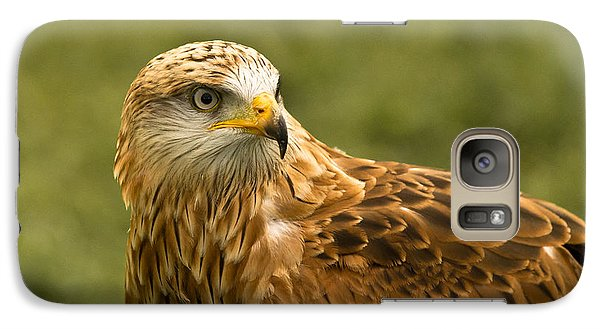 Galaxy Case featuring the photograph Red Kite by Scott Carruthers