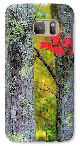 Red Leaves Galaxy S7 Case