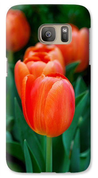 Colours Galaxy S7 Case - Red Tulips by Az Jackson