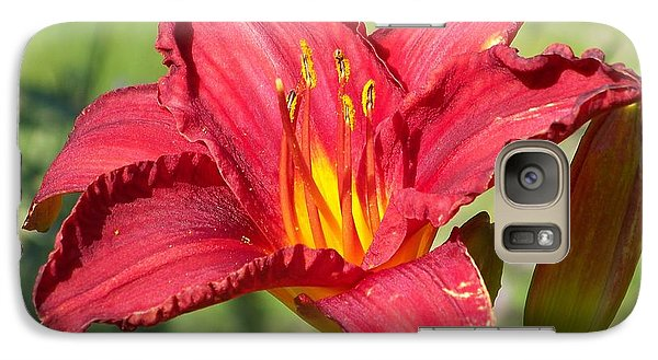 Galaxy Case featuring the photograph Red Flower by Eunice Miller