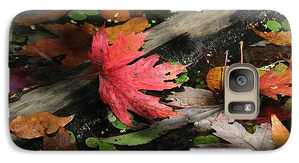 Galaxy Case featuring the photograph Red Maple Leaf In Pond by Doris Potter