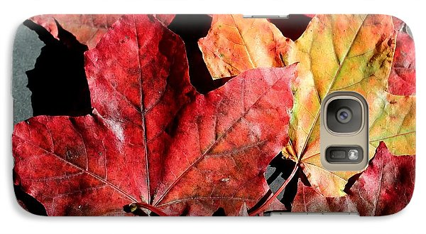 Galaxy Case featuring the photograph Red Maple Leaves Digital Painting by Barbara Griffin