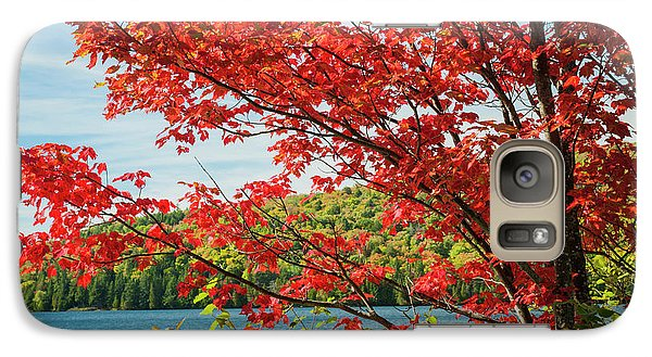 Galaxy Case featuring the photograph Red Maple On Lake Shore by Elena Elisseeva