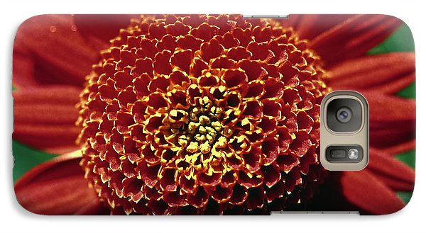 Galaxy Case featuring the photograph Red Mum Center by Sally Weigand