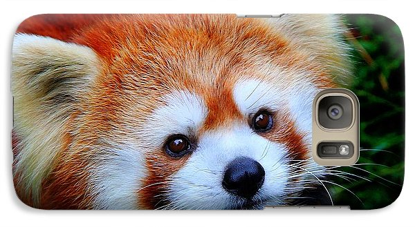 Galaxy Case featuring the photograph Red Panda by Davandra Cribbie