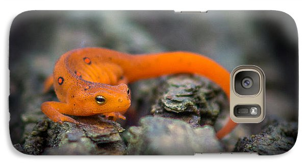 Red Spotted Newt Galaxy Case by Chris Bordeleau