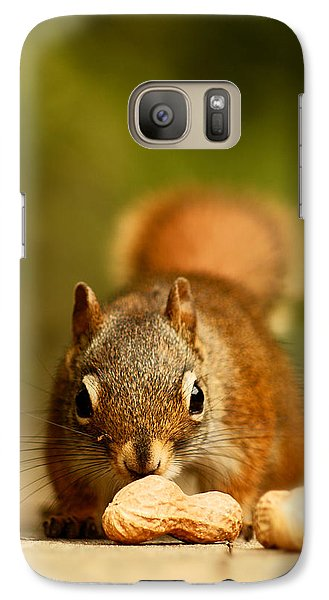 Red Squirrel   Galaxy S7 Case by Cale Best