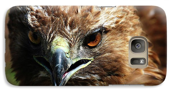 Galaxy Case featuring the photograph Red-tail Hawk Portrait by Anthony Jones