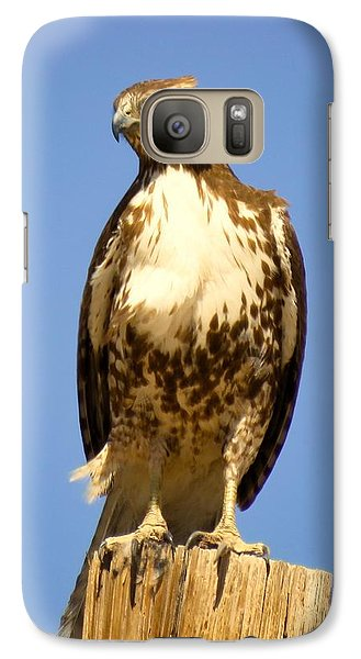 Red-tailed Hawk On Post Galaxy S7 Case