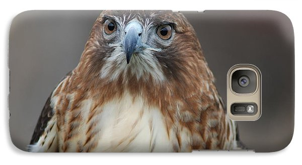 Galaxy Case featuring the photograph Red Tailed Hawk by Richard Bryce and Family