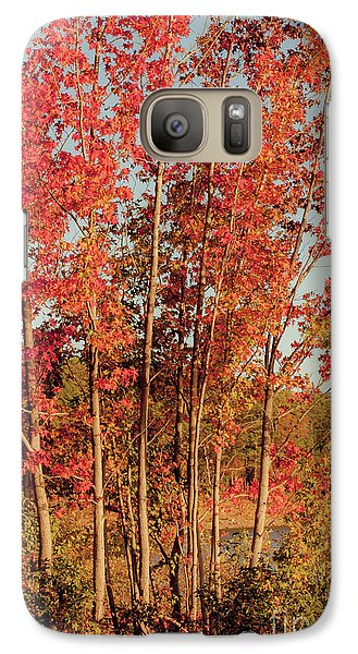 Galaxy Case featuring the photograph Red Trees by Iris Greenwell