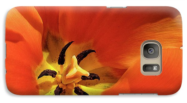 Galaxy Case featuring the photograph Red Tulip by Susan Cole Kelly