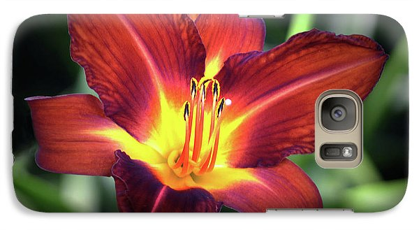 Galaxy Case featuring the photograph Red Volunteer. by Terence Davis
