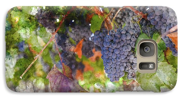 Red Wine Grapes On The Vine In Wine Country Galaxy S7 Case