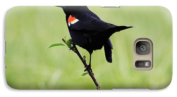 Galaxy Case featuring the photograph Red Winged Blackbird by Alyce Taylor