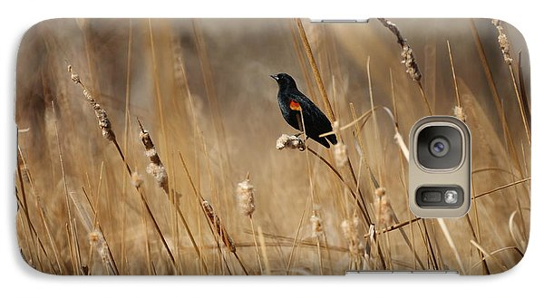 Red Winged Blackbird Galaxy S7 Case by Ernie Echols