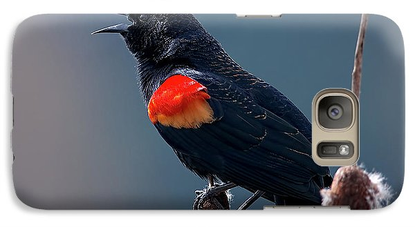 Galaxy Case featuring the photograph Red-winged Blackbird Singing by Sharon Talson