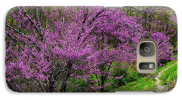 Galaxy Case featuring the photograph Redbud And Path by Thomas R Fletcher