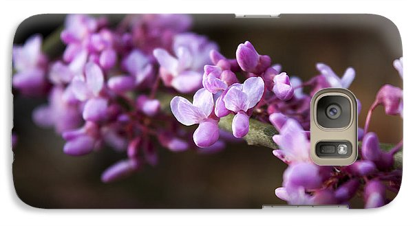 Galaxy Case featuring the photograph Redbuds In March by Jeff Severson