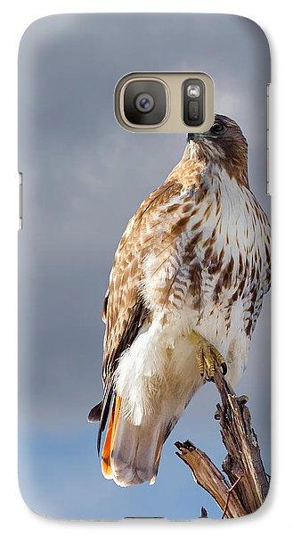 Redtail Portrait Galaxy S7 Case
