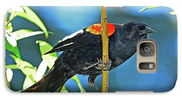 Galaxy Case featuring the photograph Redwing Blackbird by Jack Moskovita