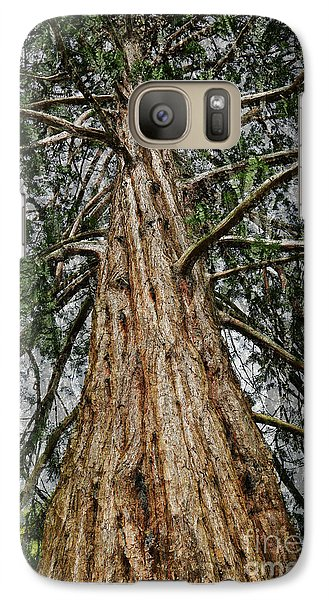 Redwood Reaches For The Sky Galaxy S7 Case