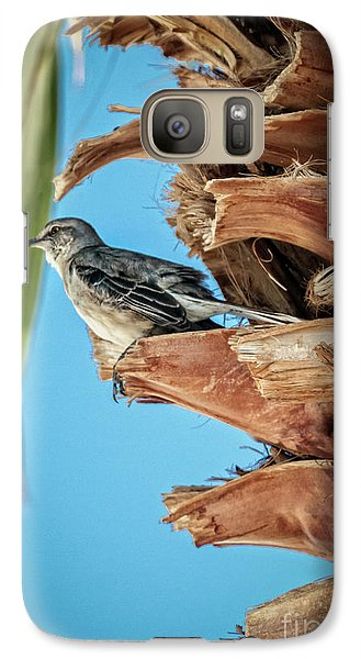 Galaxy Case featuring the photograph Resting Mockingbird by Robert Bales