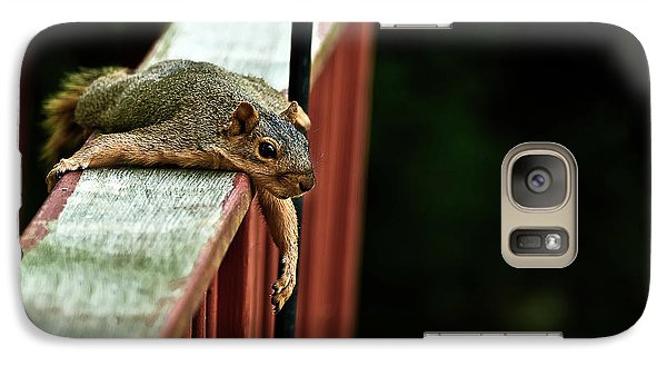 Resting Squirrel Galaxy S7 Case by  Onyonet  Photo Studios