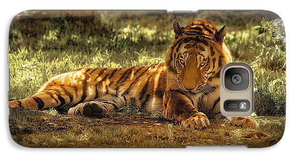 Galaxy Case featuring the photograph Resting Tiger by Chris Boulton