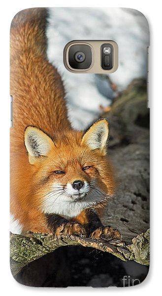 Galaxy Case featuring the photograph Reynard The Fox by Nina Stavlund