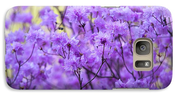 Galaxy Case featuring the photograph Rhododendron In Bloom. Spring Watercolors by Jenny Rainbow