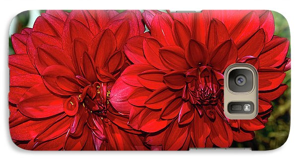 Galaxy Case featuring the photograph Rich Red Dahlias By Kaye Menner by Kaye Menner