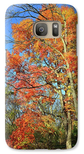 Galaxy Case featuring the photograph River Road Maples by Ray Mathis