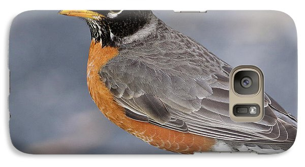 Galaxy Case featuring the photograph Robin by Douglas Stucky