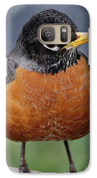 Galaxy Case featuring the photograph Robin II by Douglas Stucky