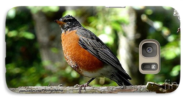 Galaxy Case featuring the photograph Robin by Janice Spivey