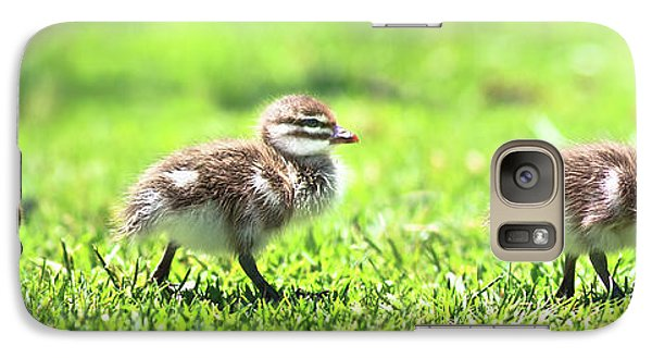 Galaxy Case featuring the photograph Rogue Duckling, Yanchep National Park by Dave Catley