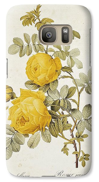 Flowers Galaxy S7 Case - Rosa Sulfurea by Pierre Redoute