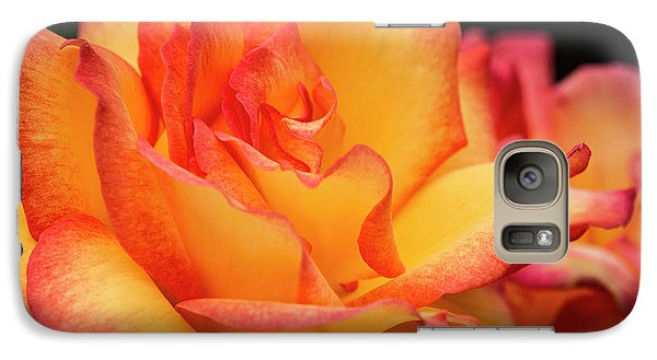 Galaxy Case featuring the photograph Rose Beauty by Jean Noren