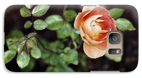 Galaxy Case featuring the photograph Rose by Stefan Nielsen