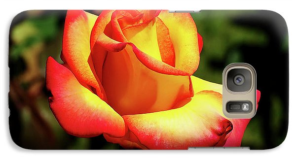 Galaxy Case featuring the photograph Rose To Remember by Dale Stillman