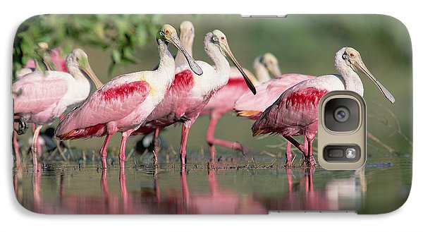 Spoonbill Galaxy S7 Case - Roseate Spoonbill Flock Wading In Pond by Tim Fitzharris