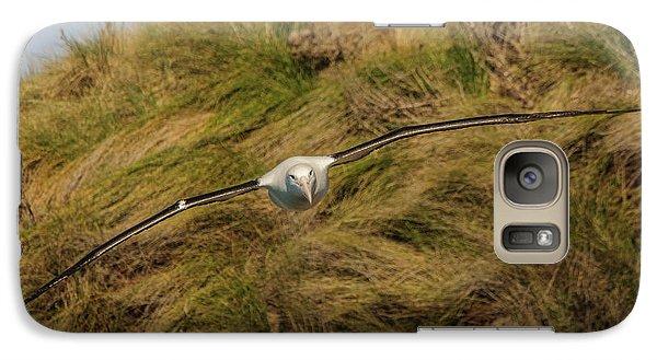 Royal Albatross 2 Galaxy S7 Case by Werner Padarin