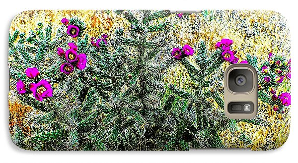 Galaxy Case featuring the photograph Royal Gorge Cactus With Flowers by Joseph Hendrix