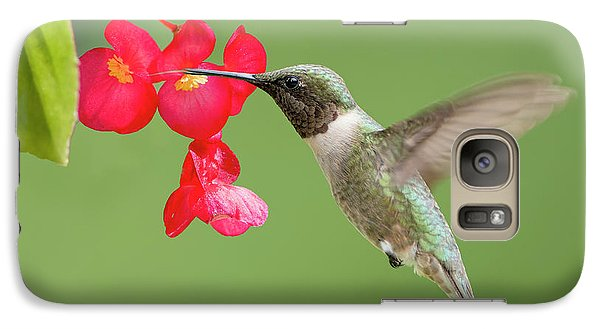 Galaxy Case featuring the photograph Ruby Throated Hummingbird Feeding On Begonia by Bonnie Barry