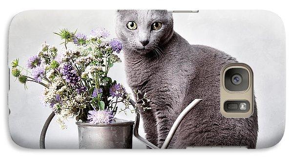 Cat Galaxy S7 Case - Russian Blue 02 by Nailia Schwarz