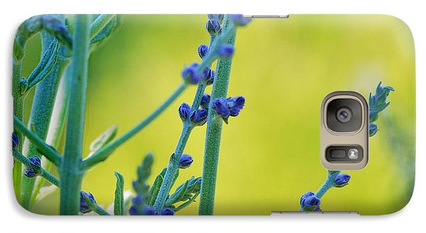 Galaxy Case featuring the photograph Russian Sage by Douglas MooreZart