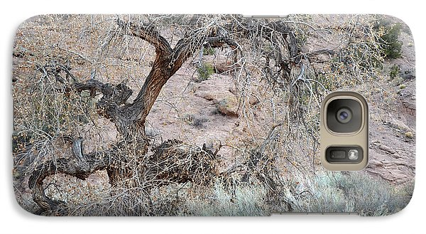 Galaxy Case featuring the photograph Rustic Desert Tree by Andrea Hazel Ihlefeld
