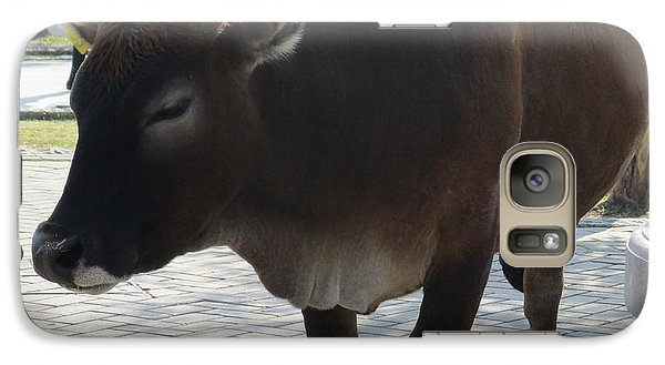 Galaxy Case featuring the photograph Sacred Cow 2 by Randall Weidner